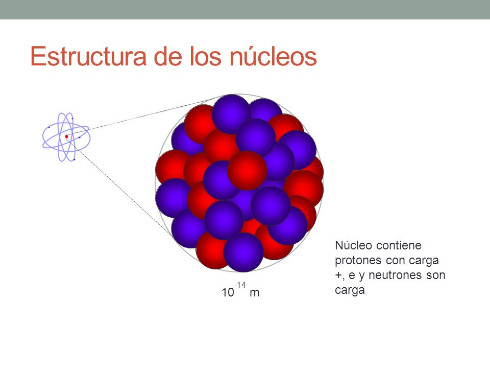 Estructura de los núcleos