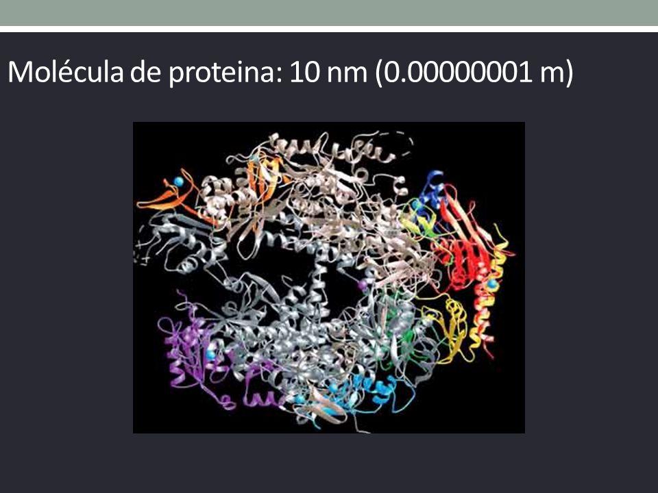 Molécula de proteina: 10 nm (0.00000001 m)