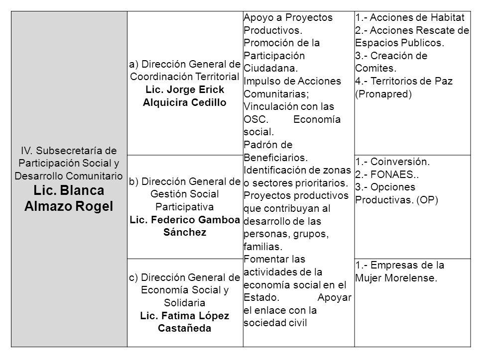 IV. Subsecretaría de Participación Social y Desarrollo Comunitario Lic