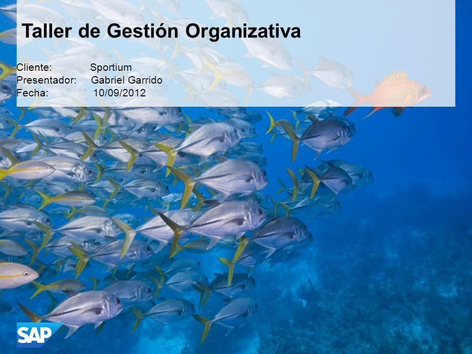 Taller de Gestión Organizativa