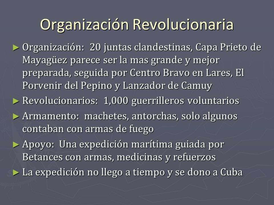 Organización Revolucionaria
