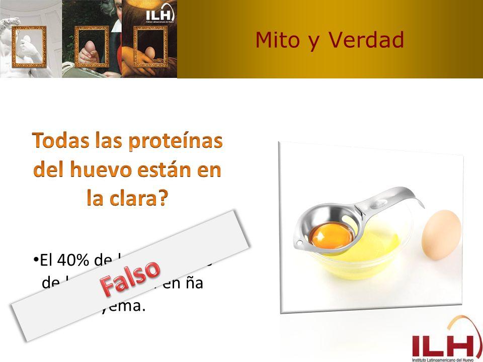 Todas las proteínas del huevo están en la clara