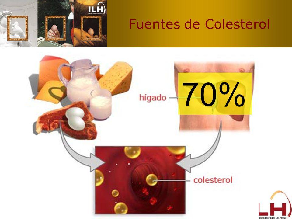 Fuentes de Colesterol 70%