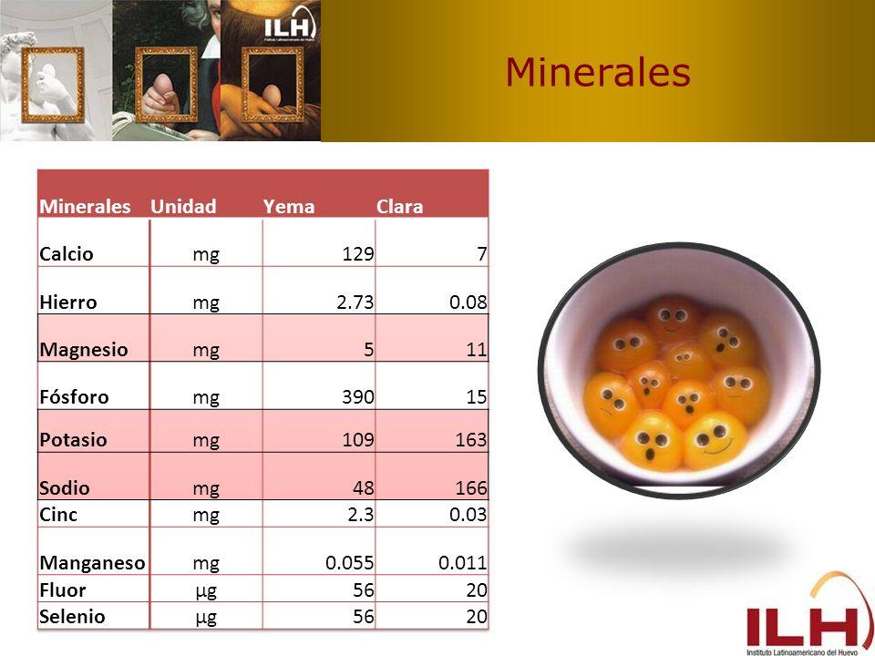 Minerales Minerales Unidad Yema Clara Calcio mg 129 7 Hierro 2.73 0.08