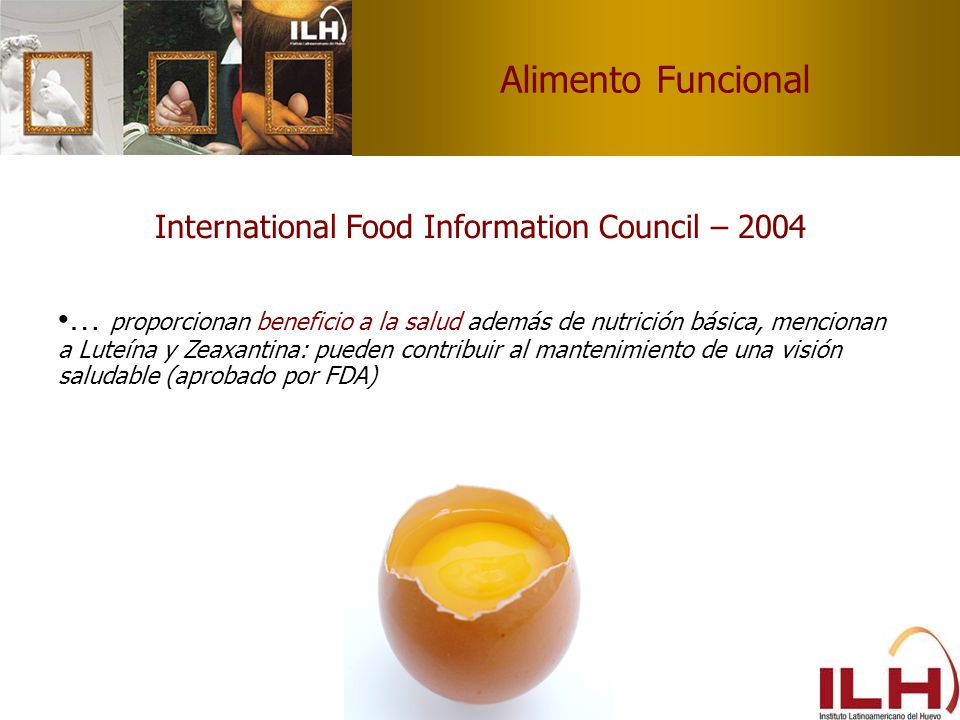 International Food Information Council – 2004