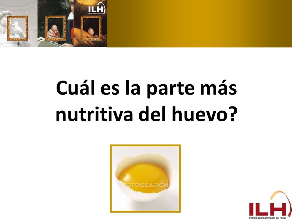 Cuál es la parte más nutritiva del huevo