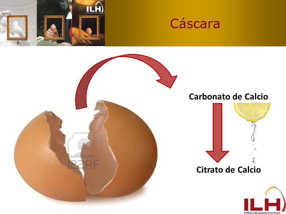 Cáscara Carbonato de Calcio Citrato de Calcio