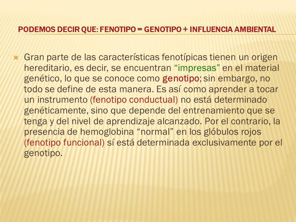 PODEMOS DECIR QUE: FENOTIPO = GENOTIPO + INFLUENCIA AMBIENTAL