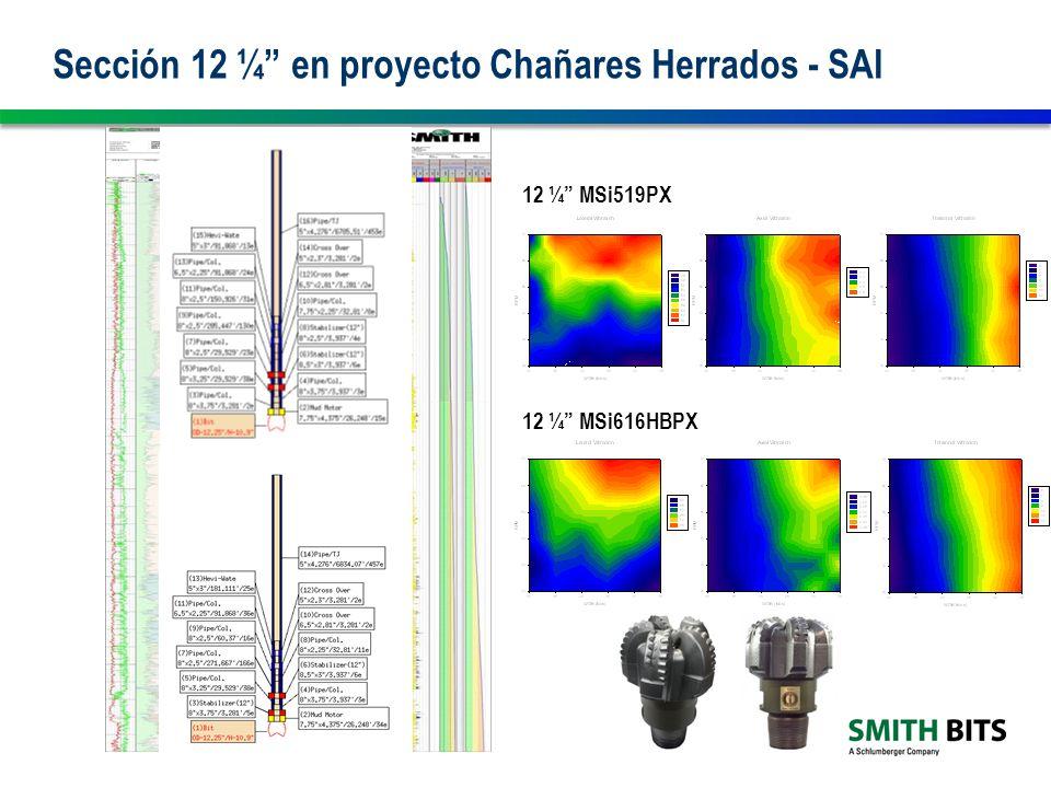 Sección 12 ¼ en proyecto Chañares Herrados - SAI
