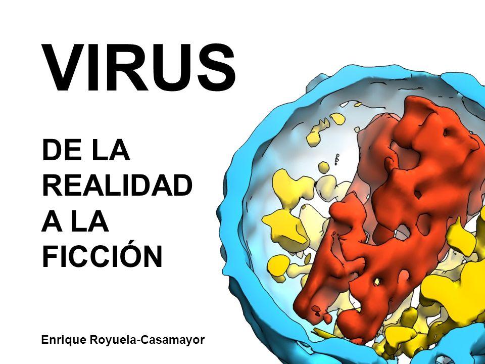 VIRUS DE LA REALIDAD A LA FICCIÓN Enrique Royuela-Casamayor