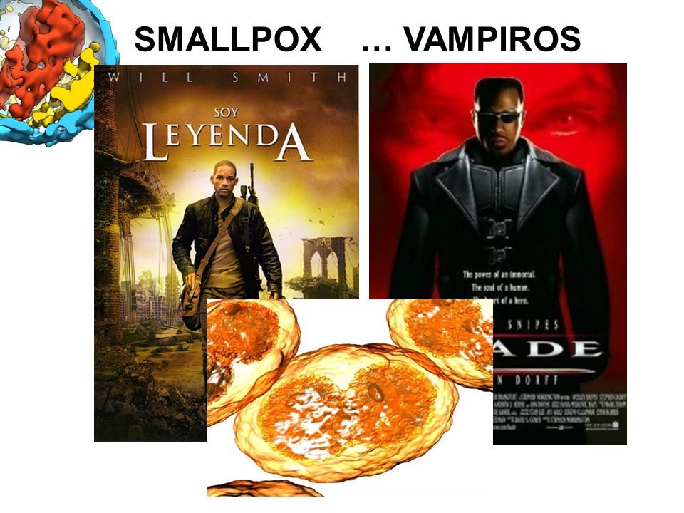 SMALLPOX … VAMPIROS