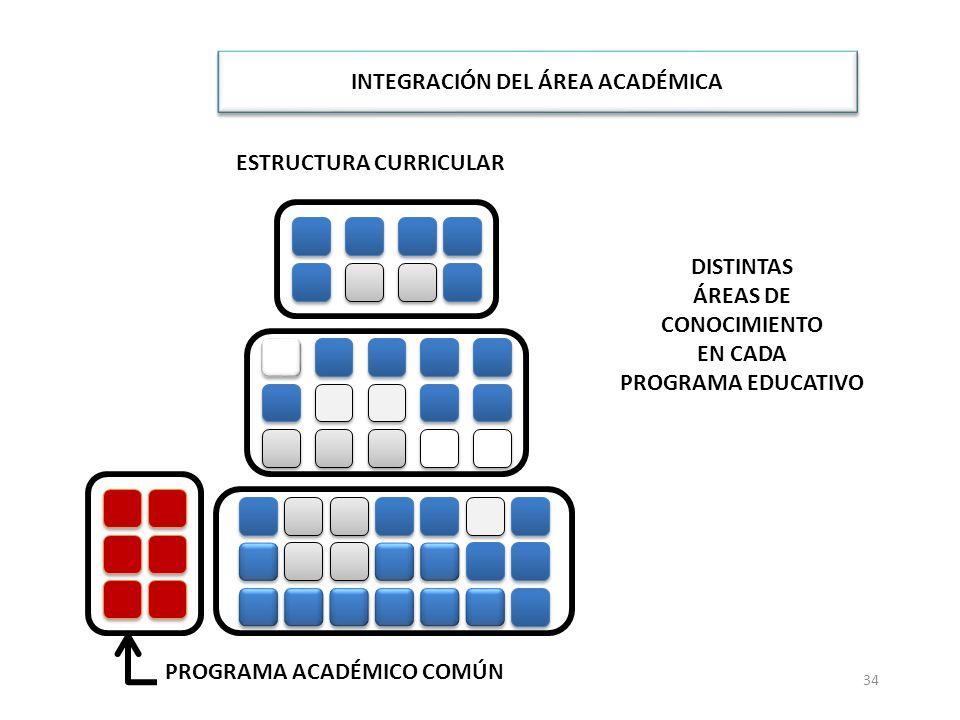 INTEGRACIÓN DEL ÁREA ACADÉMICA