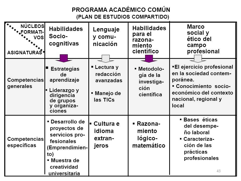 Estrategias PROGRAMA ACADÉMICO COMÚN Habilidades Socio- cognitivas