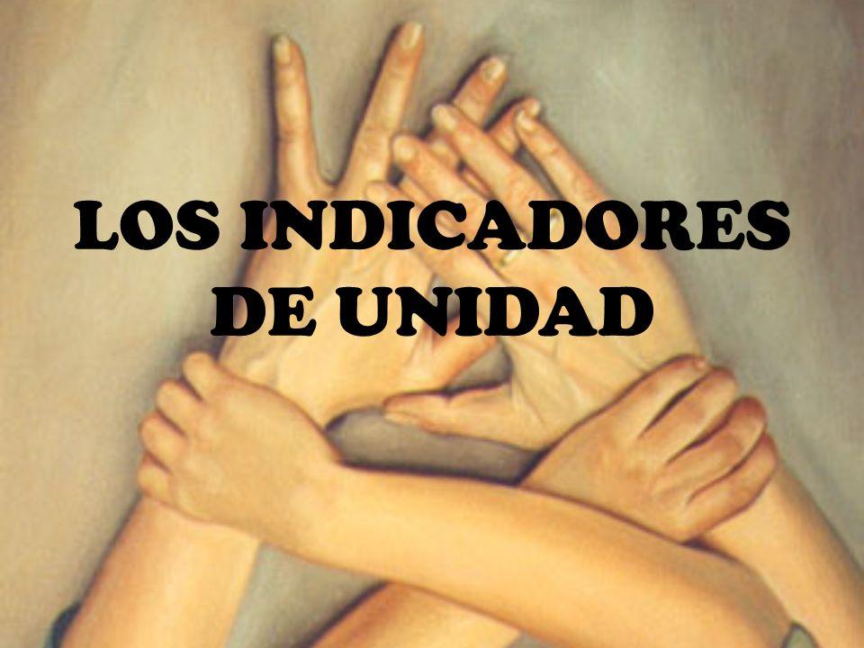 LOS INDICADORES DE UNIDAD