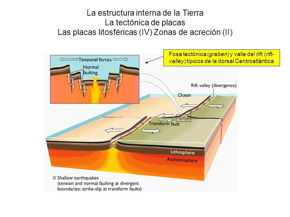 La estructura interna de la Tierra La tectónica de placas Las placas litosféricas (IV) Zonas de acreción (II)