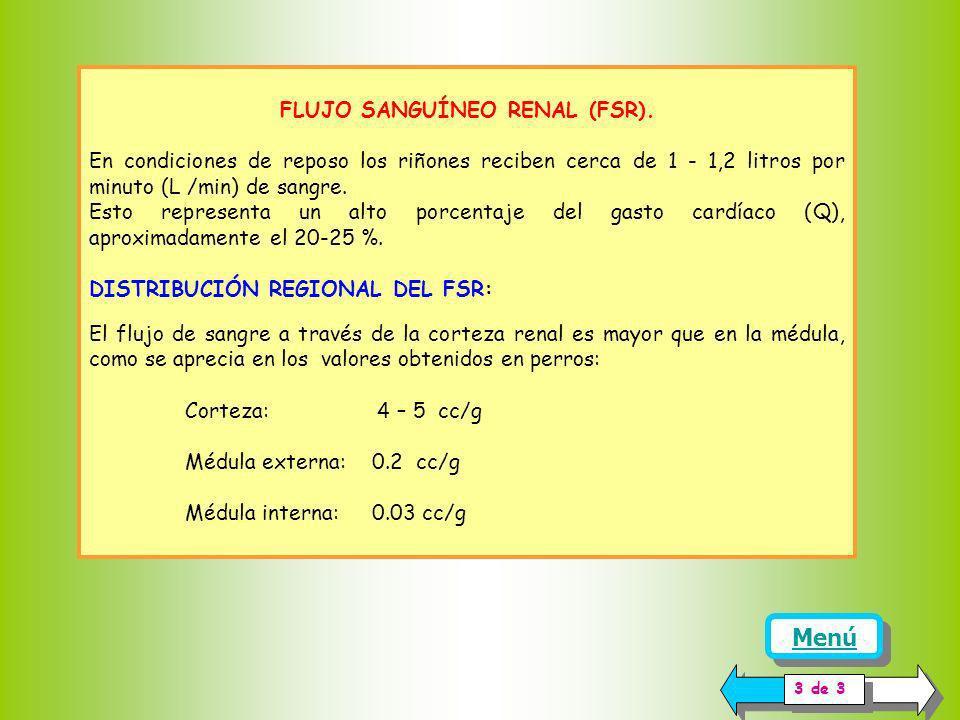 FLUJO SANGUÍNEO RENAL (FSR).