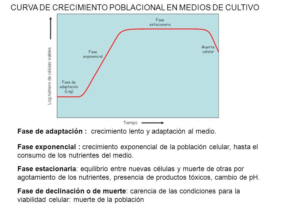 CURVA DE CRECIMIENTO POBLACIONAL EN MEDIOS DE CULTIVO