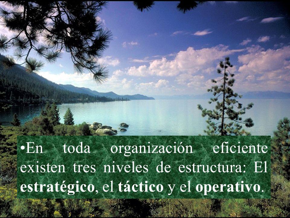 En toda organización eficiente existen tres niveles de estructura: El estratégico, el táctico y el operativo.