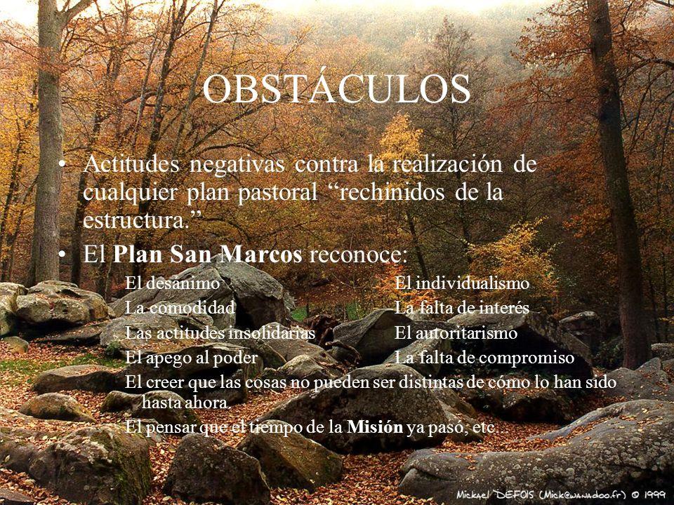 OBSTÁCULOS Actitudes negativas contra la realización de cualquier plan pastoral rechinidos de la estructura.