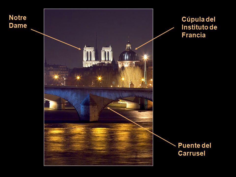 Notre Dame Cúpula del Instituto de Francia Puente del Carrusel