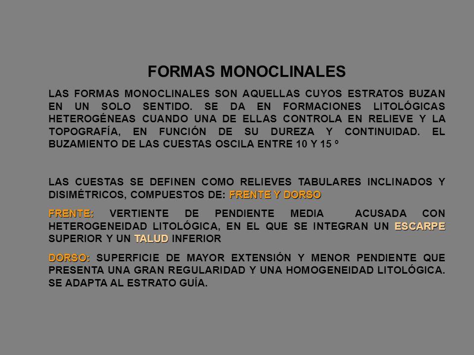 FORMAS MONOCLINALES