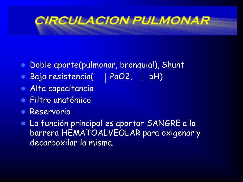 Doble aporte(pulmonar, bronquial), Shunt