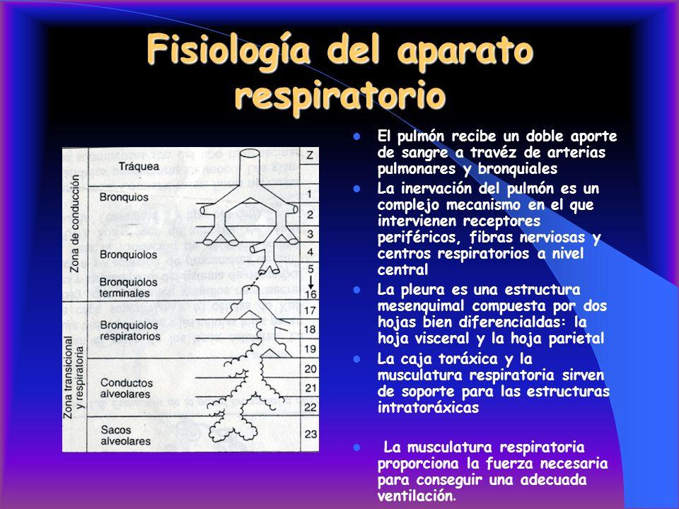 Ap Respiratorio Fisiología - SoftwareMac