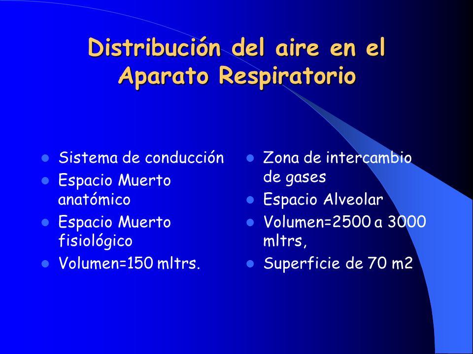 Distribución del aire en el Aparato Respiratorio