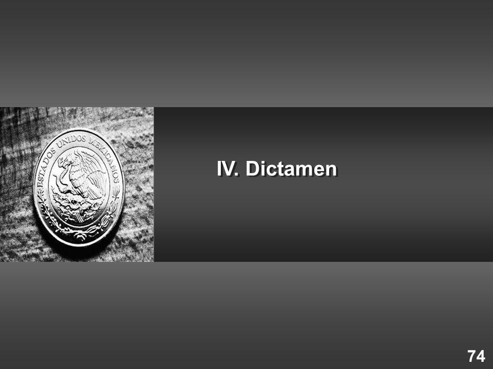 IV. Dictamen