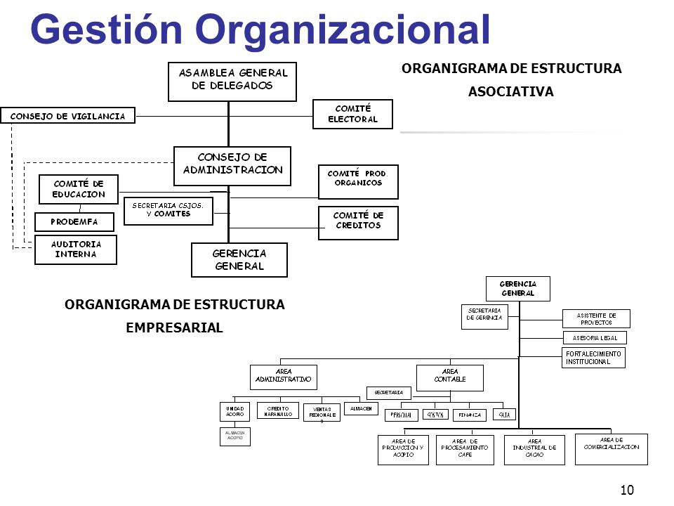Gestión Organizacional