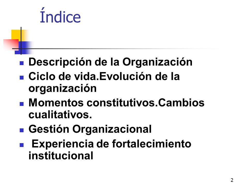Índice Descripción de la Organización