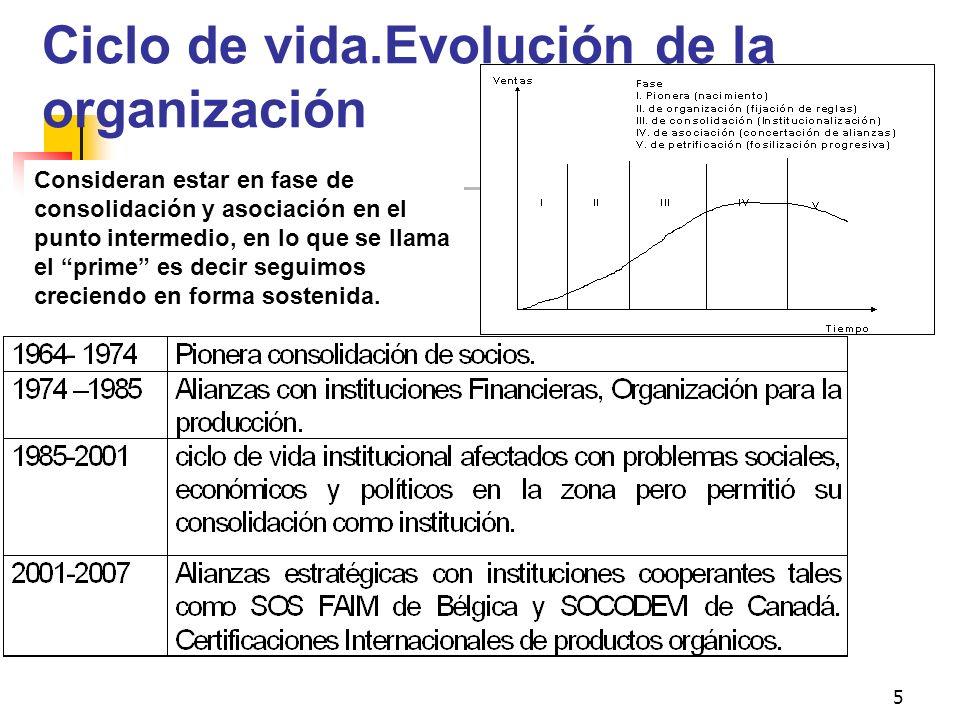 Ciclo de vida.Evolución de la organización