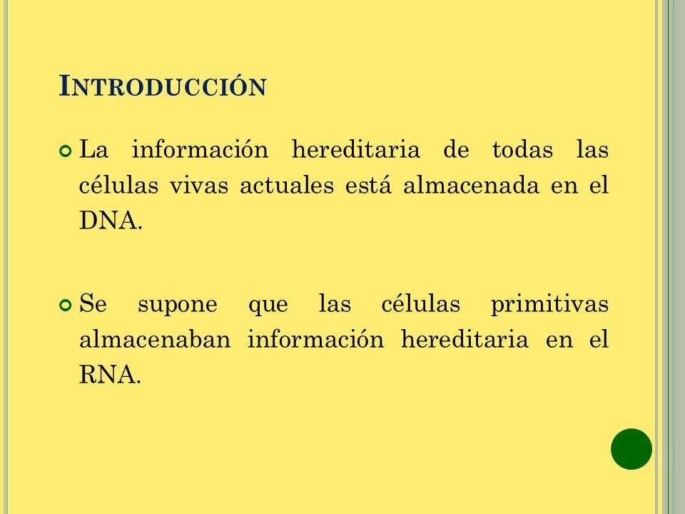 Introducción La información hereditaria de todas las células vivas actuales está almacenada en el DNA.