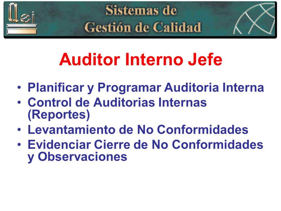 Auditor Interno Jefe Planificar y Programar Auditoria Interna