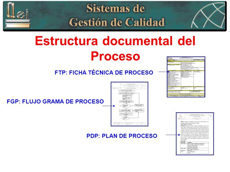 Estructura documental del Proceso