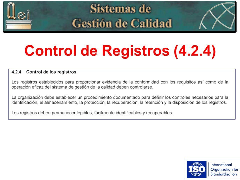 Control de Registros (4.2.4)
