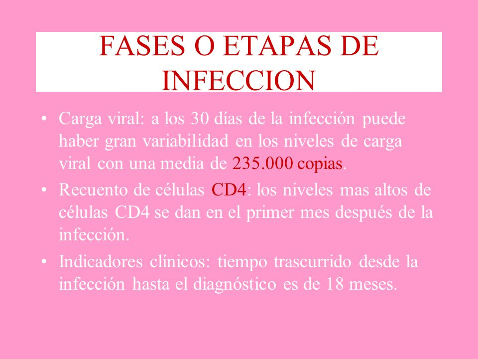 FASES O ETAPAS DE INFECCION