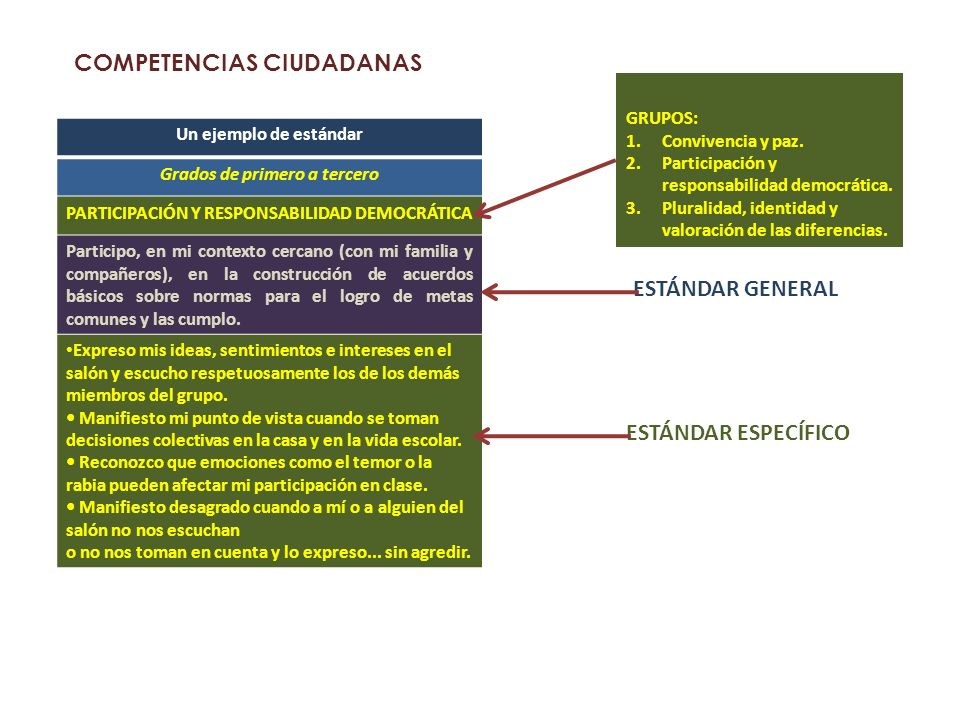 COMPETENCIAS CIUDADANAS