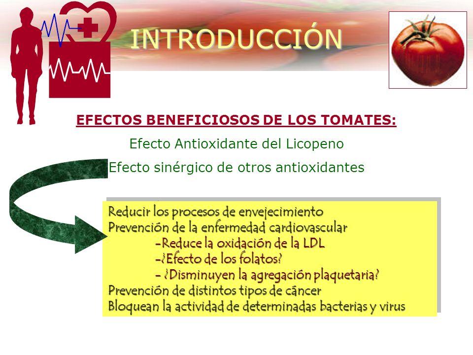 EFECTOS BENEFICIOSOS DE LOS TOMATES: