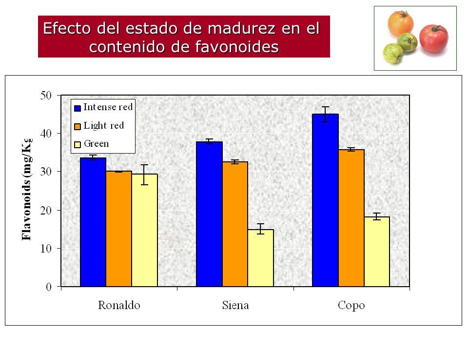 Efecto del estado de madurez en el contenido de favonoides