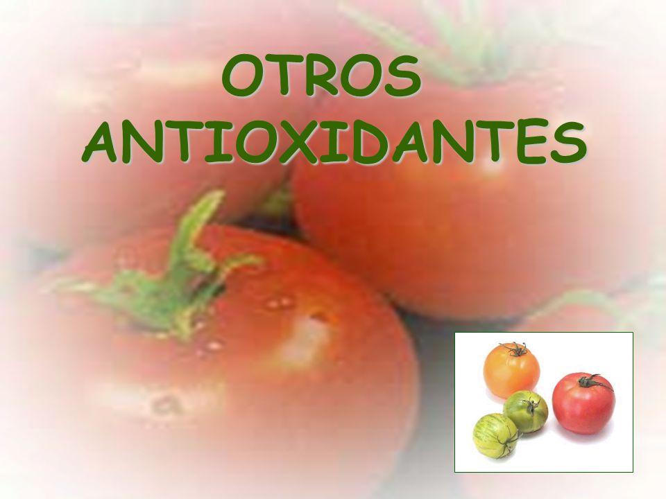 OTROS ANTIOXIDANTES