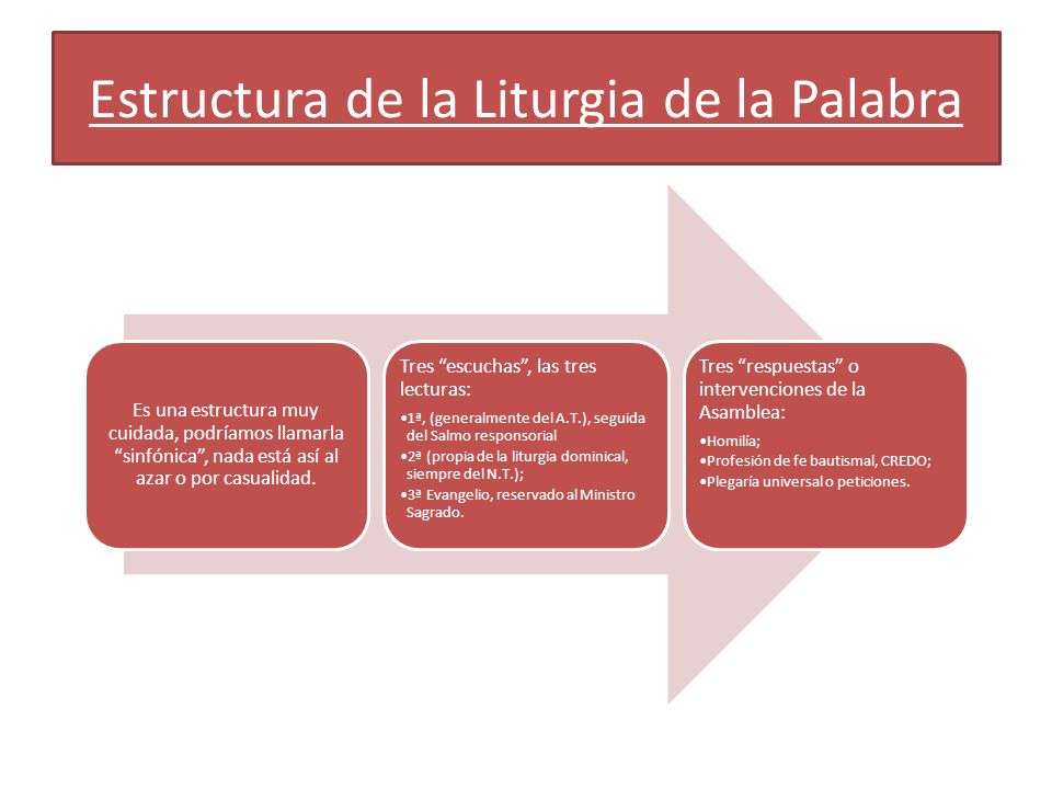 Estructura de la Liturgia de la Palabra