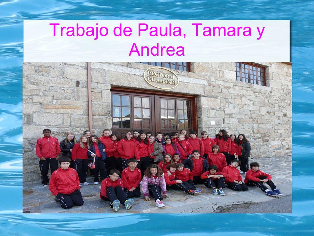 Trabajo de Paula, Tamara y Andrea