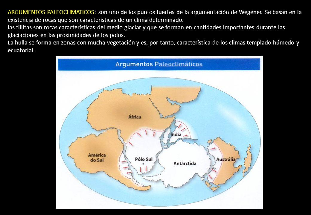 ARGUMENTOS PALEOCLIMATICOS: son uno de los puntos fuertes de la argumentación de Wegener. Se basan en la existencia de rocas que son características de un clima determinado.