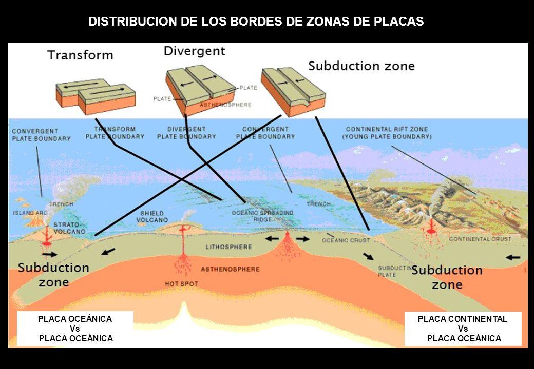 DISTRIBUCION DE LOS BORDES DE ZONAS DE PLACAS