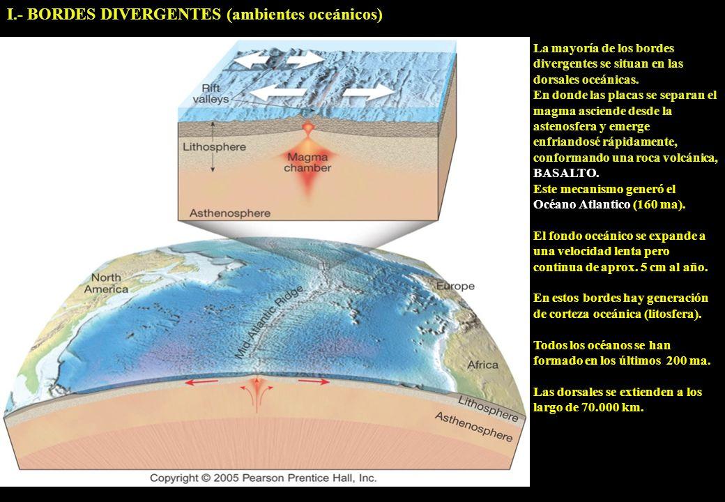 I.- BORDES DIVERGENTES (ambientes oceánicos)