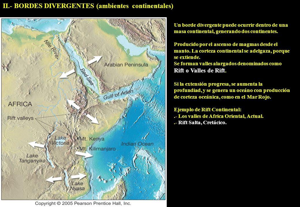 II.- BORDES DIVERGENTES (ambientes continentales)