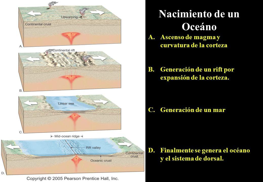 Nacimiento de un Oceáno