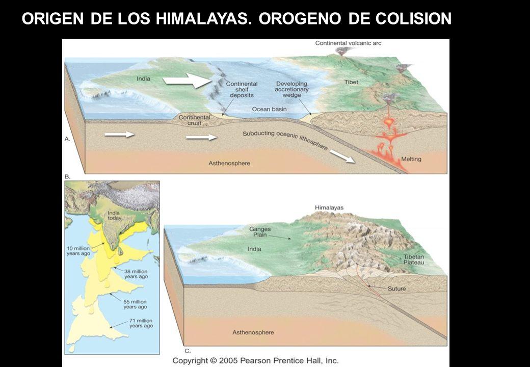 ORIGEN DE LOS HIMALAYAS. OROGENO DE COLISION