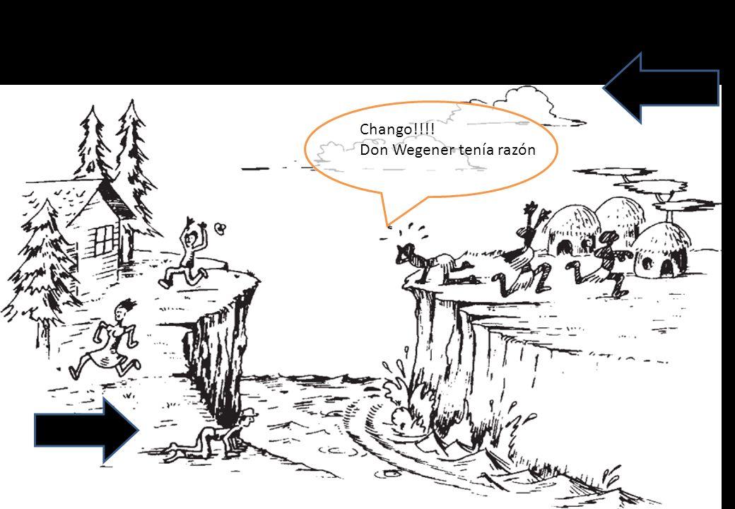 Chango!!!! Don Wegener tenía razón